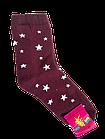 Носки женские махровые хлопок стрейч р.23-25. От 6 пар по 12грн, фото 3