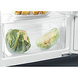 Встроенный холодильник с морозильной камерой Whirlpool ARG 7341, фото 4