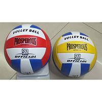 Мяч волейбол  2 цвета