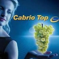 Фунгицид Кабрио Топ 20 граммов BASF, фото 1
