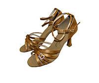 Обувь для танца LD2006-BG