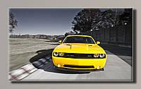 Картина  DodgeChallenger 2 HAS-245 55*32.5