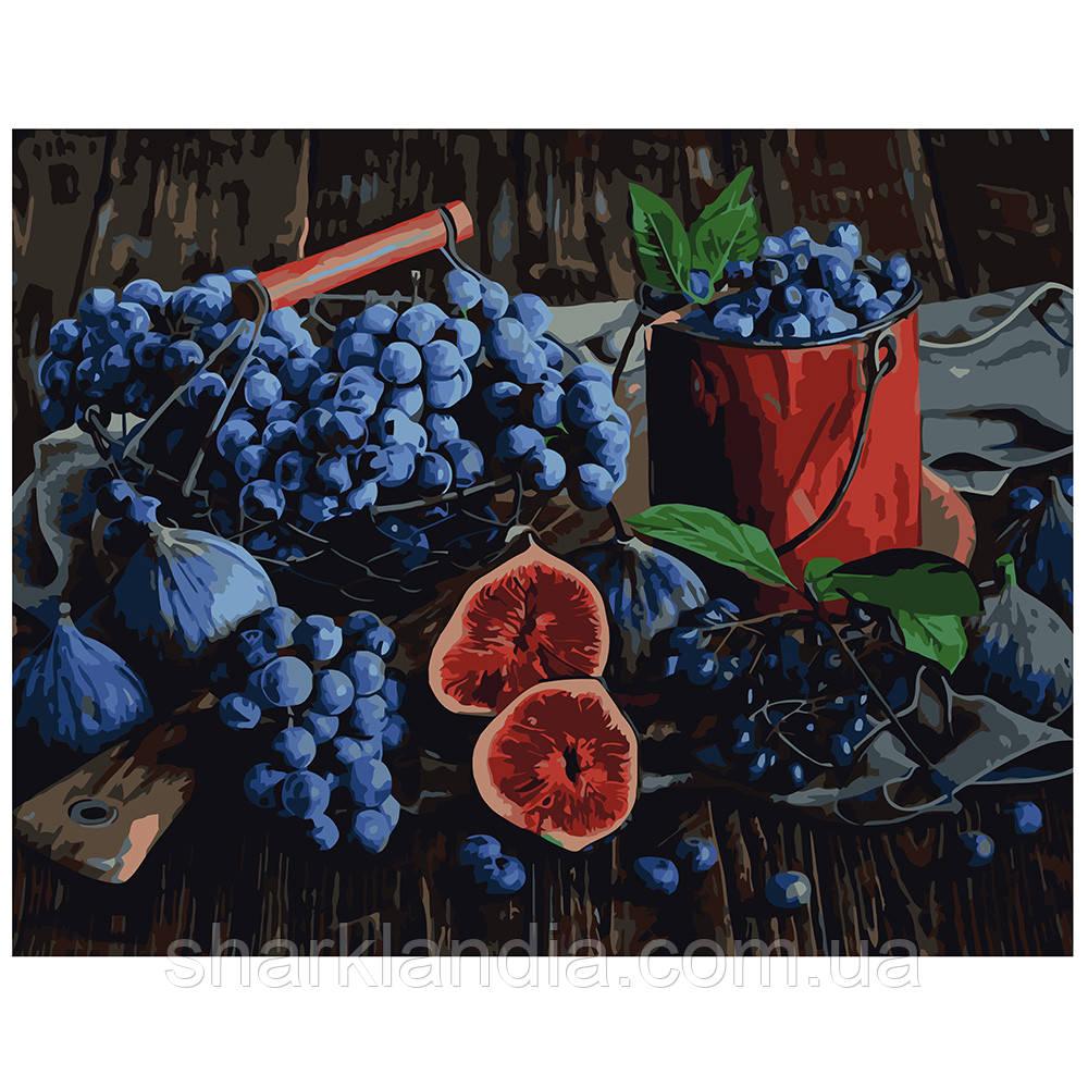 Картина по Номерам Виноград и Инжир 40х50см Strateg