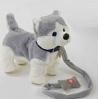 Детская мягкая игрушка Хаски С43980