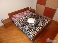 Апартаменты с евроремонтом, 2х-комнатная (61119)