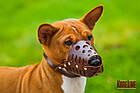 Намордник KARELINE из натуральной кожи для малых пород собак размер XL, фото 8