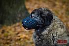 Намордник KARELINE з натуральної шкіри для мастино, кавказької вівчарки розмір ХL, фото 5