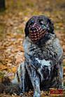 Намордник-сітка KARELINE з натуральної шкіри для мастино, кавказької вівчарки, фото 6