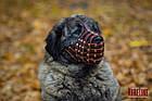Намордник-сітка KARELINE з натуральної шкіри для мастино, кавказької вівчарки, фото 8