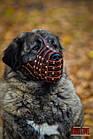 Намордник-сітка KARELINE з натуральної шкіри для мастино, кавказької вівчарки, фото 7