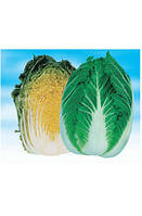 Семена капусты пекинской, ультраранний гибрид Вилли F1, NongWoo Bio (Корея), 1000 семян