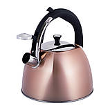 Чайник из нержавеющей стали со свистком и черной бакелитовой ручкой Kamille KM-0697 для индукции и газа (3 л), фото 2