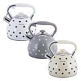 Чайник из нержавеющей стали со свистком и ручкой Kamille KM-0695AN Серый для индукции и газа (3 л), фото 2