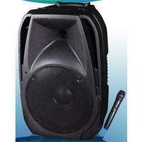 Мобильная заряжаемая автономная акустическая система Big PORTABLE 10 120Вт