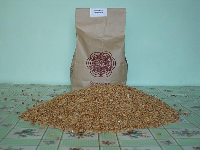 Пшеница  1кг.