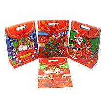Пакет на липучке подарочный Новый Год 12 шт. в 1 упаковке