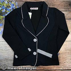 Темно синие пиджаки для девочек Размеры: 116,128,140,152,164 см (02331-1)