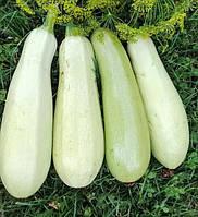 Семена Кабачка белоплодный Застольный, 2г