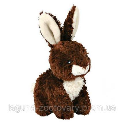 """Игрушка """"Кролик плюшевый"""" для собак и щенков, фото 2"""