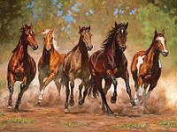 """Раскраска по цифрам """"Лошади в каньоне худ Каммингс Крис"""""""