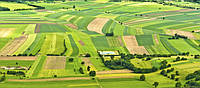 Земельна реформа в Україні має втратити корупційну складову!