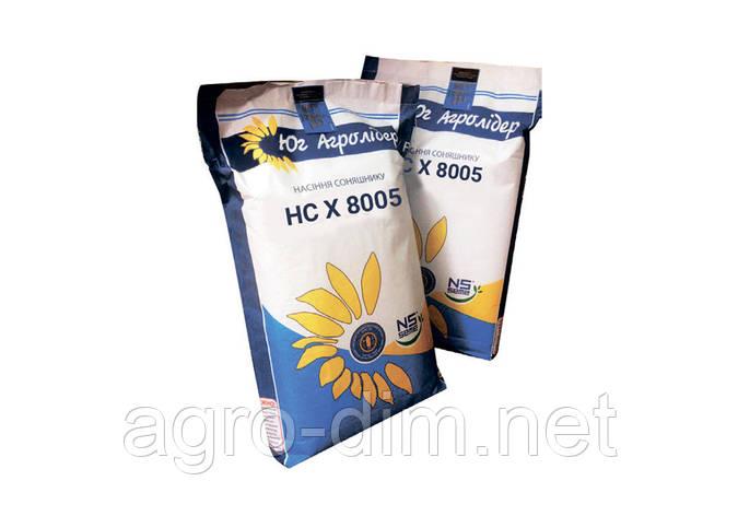 Семена подсолнечника НС Х 8005 под гранстар G+ рас, фото 2