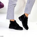 Удобные повседневные черные замшевые женские ботинки натуральная замша, фото 5