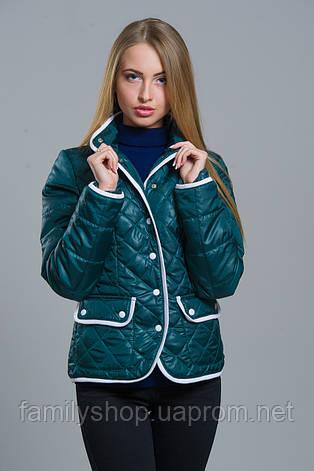 Женская весенняя короткая куртка на синтепоне, фото 2