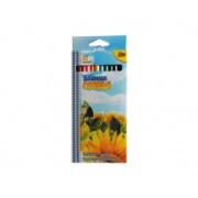 """Цветные карандаши Olli 12цв, """"Квітка сонця"""" OL-104-12"""