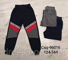 Трикотажні спортивні штани для хлопчиків Seagull 134-164 p.p.