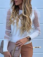 Стильна жіноча блузка з сіткою в горошок