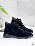 Жіночі черевики ДЕМІ чорні на шнурівці натуральна замша весна/осінь, фото 3