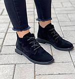 Жіночі черевики ДЕМІ чорні на шнурівці натуральна замша весна/осінь, фото 2