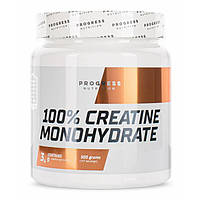 Progress Nutrition Creatine Monohydrate 500 г Креатин моногидрат Progress Nutrition