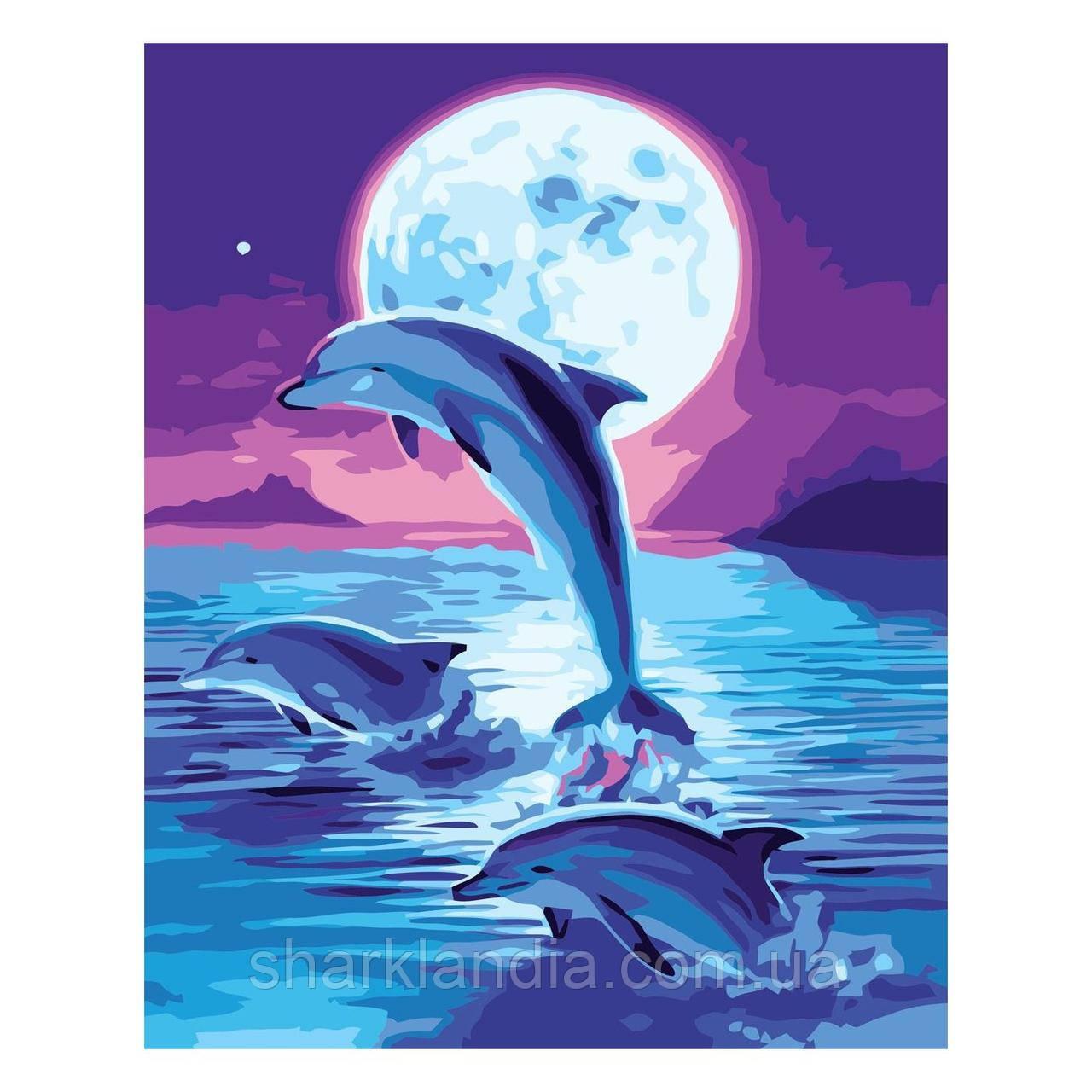 Дитяча Картина за номером Зграя дельфінів вночі 30х40 см Strateg Розфарбовування по цифрам