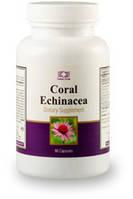 Корал Эхинацея / Coral Echinacea