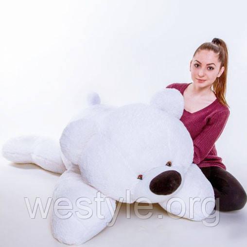 Медведь лежачий