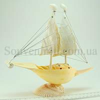 """Корабль из ракушки """"Мело диадема"""" двух мачтовый"""