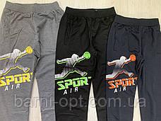 Спортивные брюки на мальчиков оптом, Taurus, 116-146 рр, фото 2