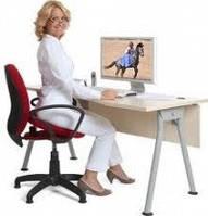 Cиденье тренажер «Спина Ок» эконом Арго для позвоночника, мышц, суставов, боль спины, остеохондроз, артроз