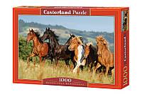 "Пазлы Castorland ""Табун лошадей"" - 1000 элементов."