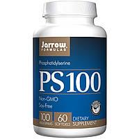 Фосфатидилсерин, Jarrow Formulas, PS100, 100 мг, 60 гелевых капсул
