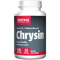 Хризин, Jarrow Formulas, 500 mg, 30 капсул
