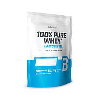 Протеїн BioTech 100% Pure Whey Lactose Free, 454 грам Печиво крем