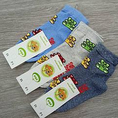 Носки детские демисезонные, для мальчика, Jelly Bear, ЕКО, р12(1-2), случайное ассорти, 30032288