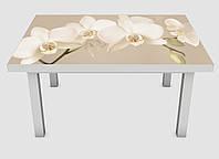 Наклейка на стол Zatarga Орхидея беж 02 600х1200 мм Z180236 TR, КОД: 1804685