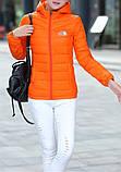 The NORTH FACE легкая женская куртка пуховик, фото 10