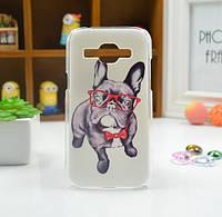 Cиликоновый чехол бампер с рисунком для Samsung Galaxy Core 2 G355 Собака в очках, фото 1