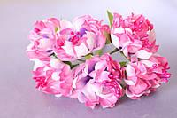 Хризантема пышная 60 шт/уп. диаметр около 3,5 см диаметр розового цвета оптом