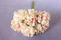 Хризантема пышная 60 шт/уп. диаметр около 3,5 см диаметр кремово-розового цвета оптом, фото 1